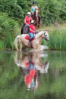 Cashback Les castels : Equitation dans le camping La Garangeoire en Vendée